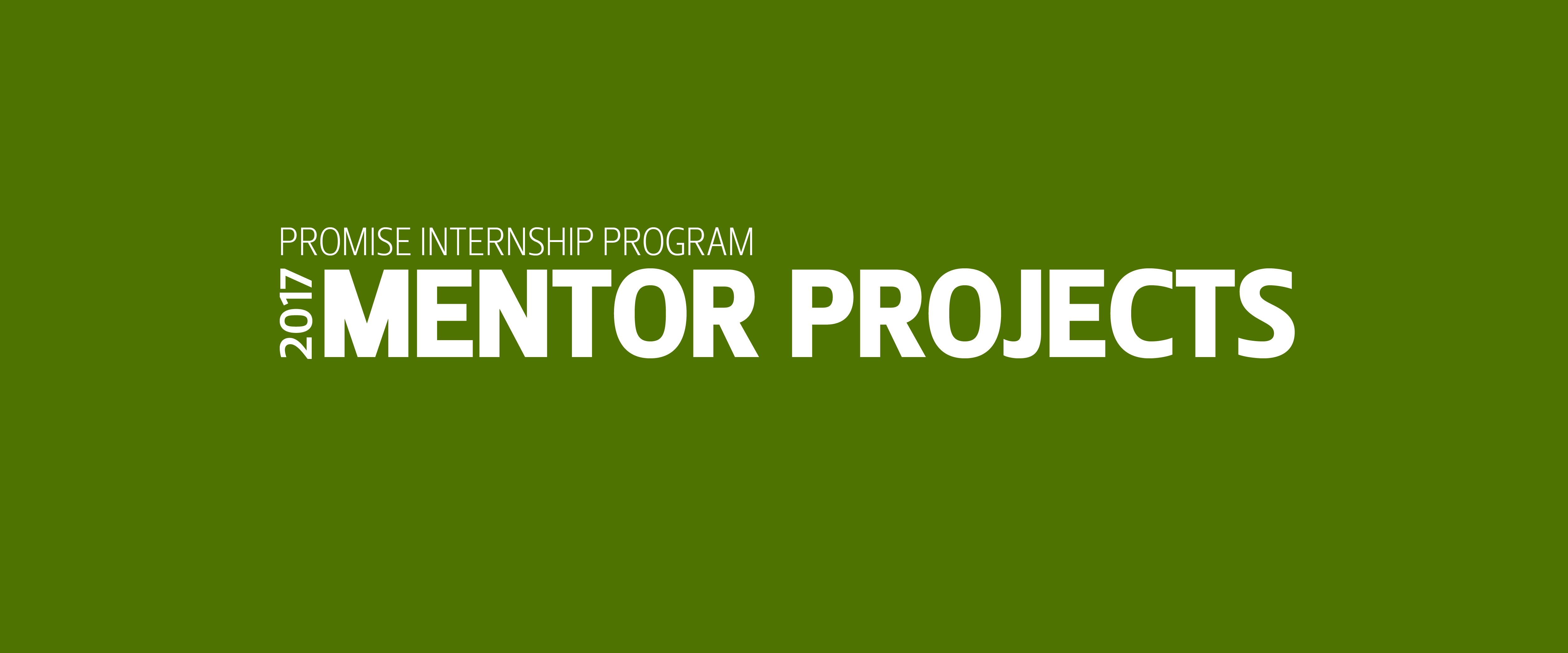 PROMISE Internship program mentor projects 2017